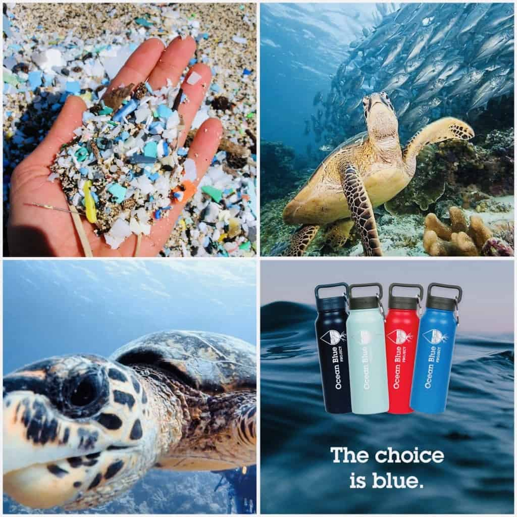 Where Does Recovered Beach Plastic Go?