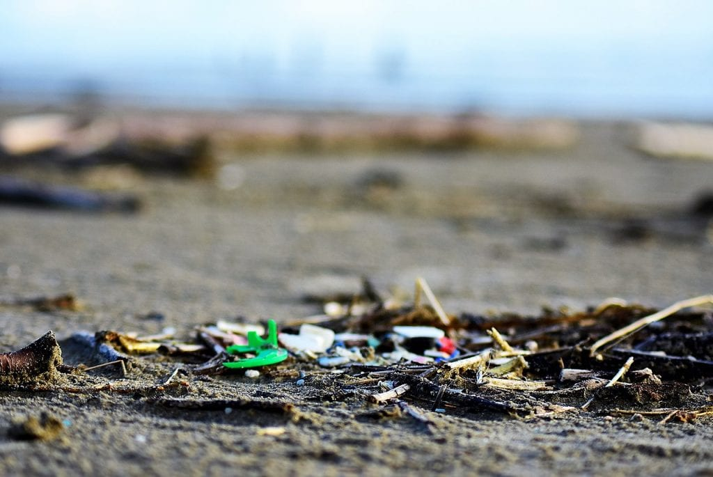 Microplastics found on beaches in Oregon