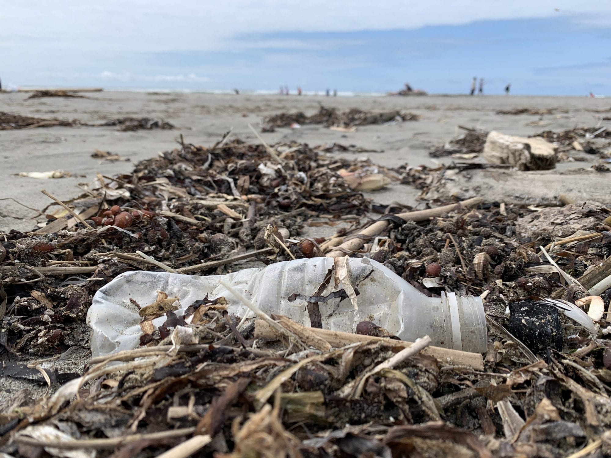 Plastic-Water-Bottles-Washing-Up-Daily-in-Long-Beach-Washington