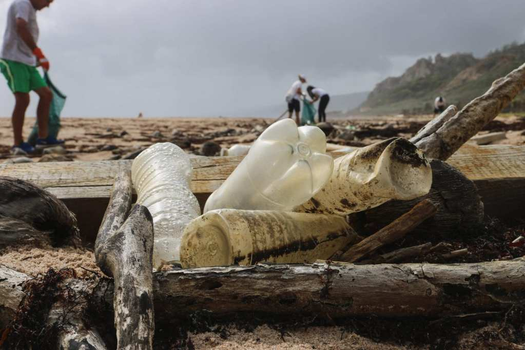 Nurdle Patrol: How One Organization is Leading the Charge for Cleaner Oceans