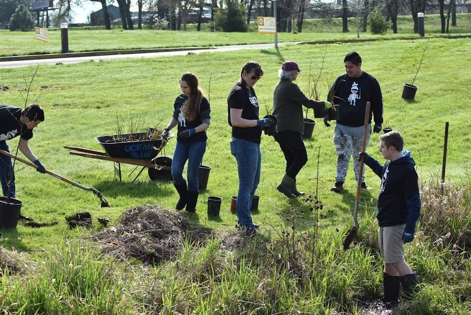 Oak-Creek-planting
