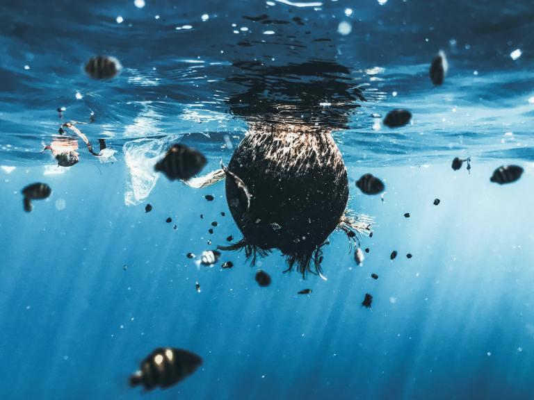 Plastic Filled Ocean Before