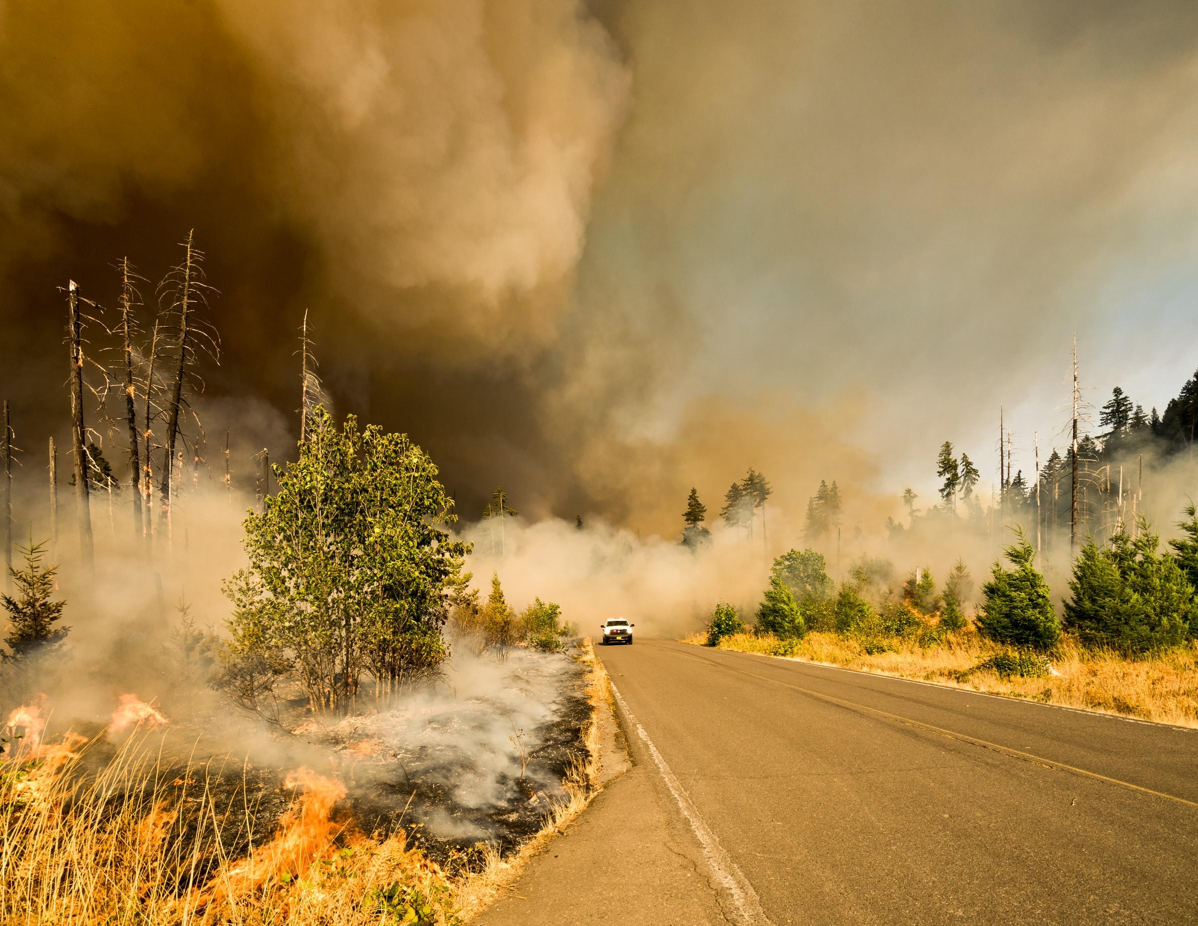 smoke-wildfires
