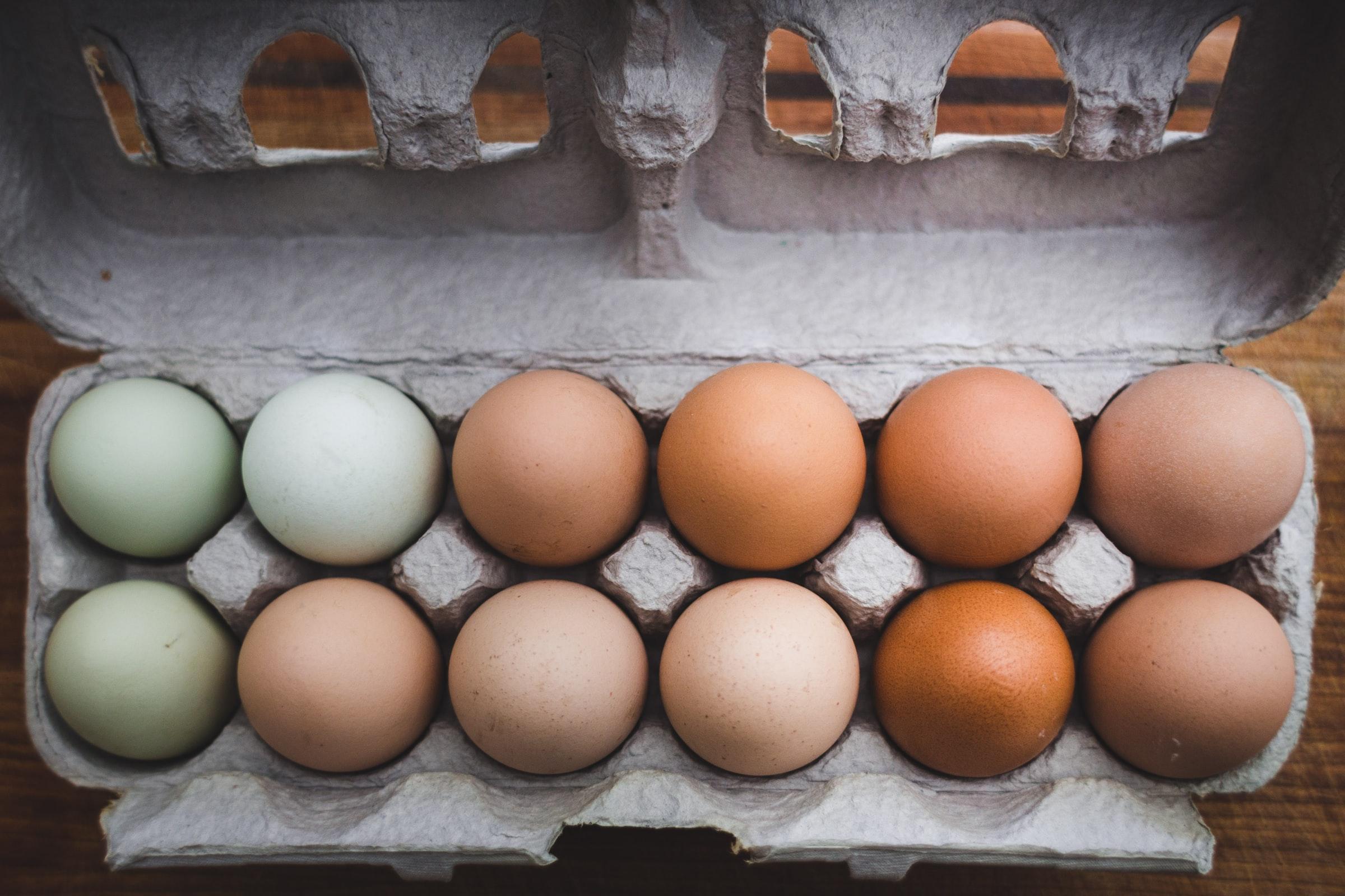 carboard-egg-carton