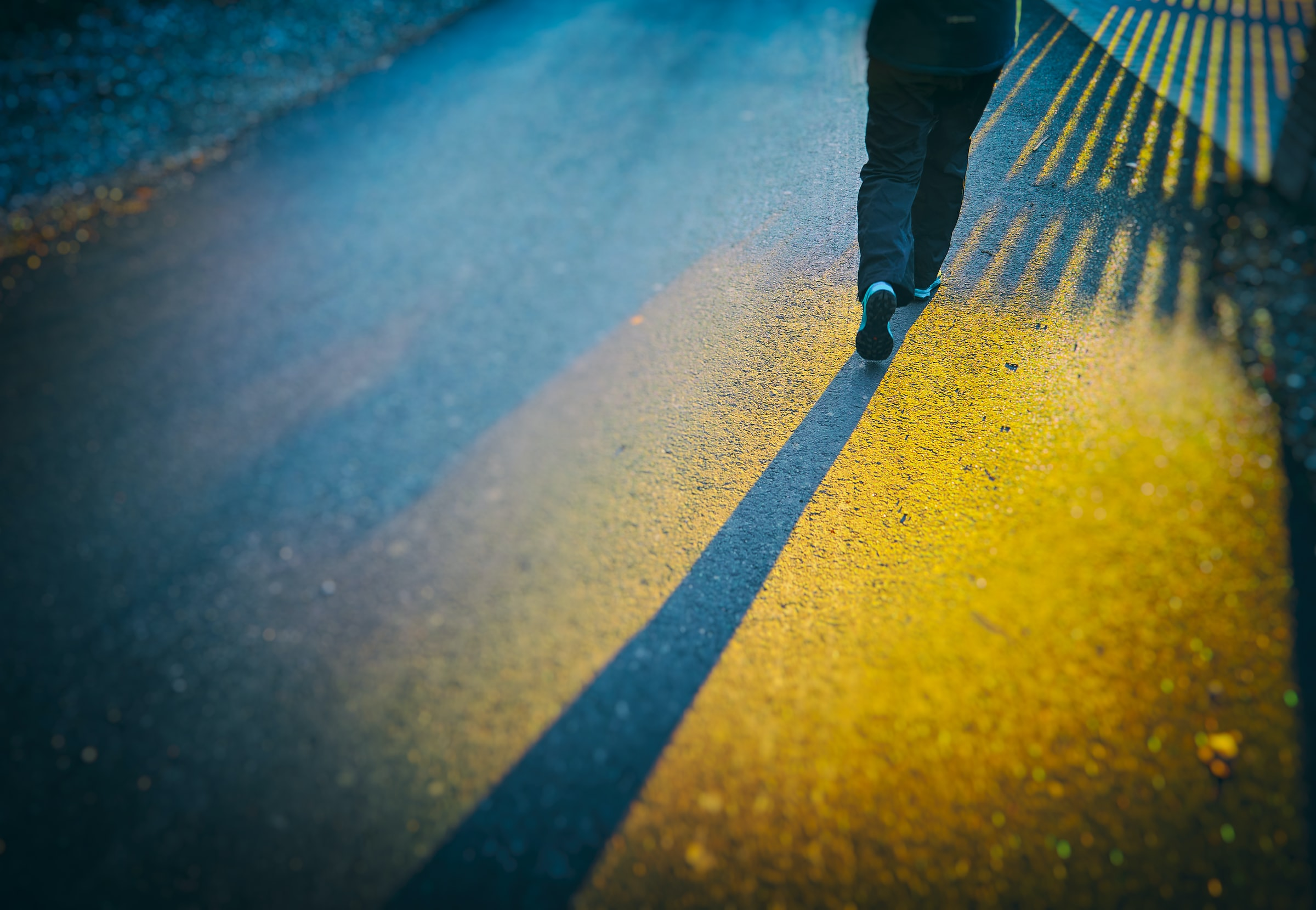 walking-the-world